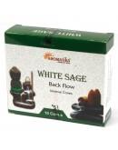 Conuri Backflow Premium - Salvie albă