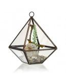 Terariu din Sticlă - Piramidă Mică